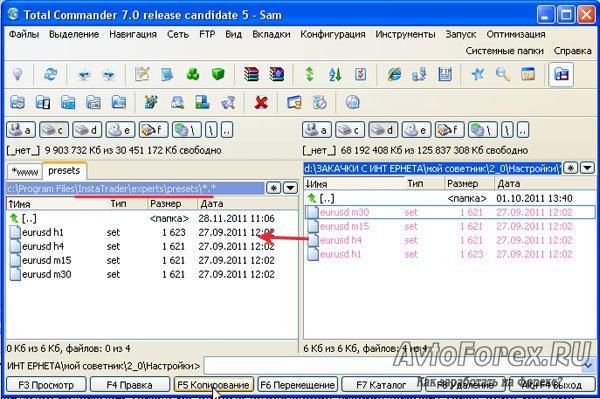 Копирование set-файлов советника в папку терминала.