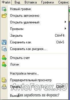 Вид меню Файл.