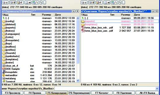 Копирование файлов стретегии Forex Blu Box в папку с терминалом