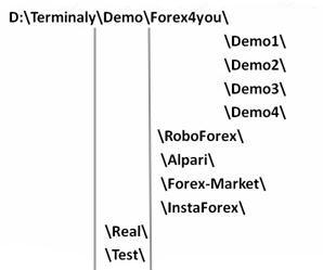 Структура папки для установки нескольких терминалов МетаТрейдер 4.