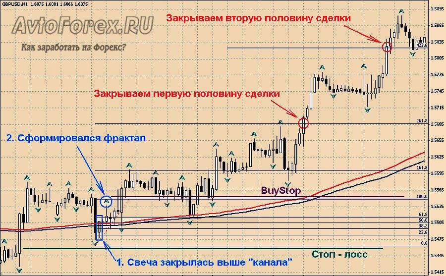 Торговая система форекс вегас индикатор форекс trendmagik