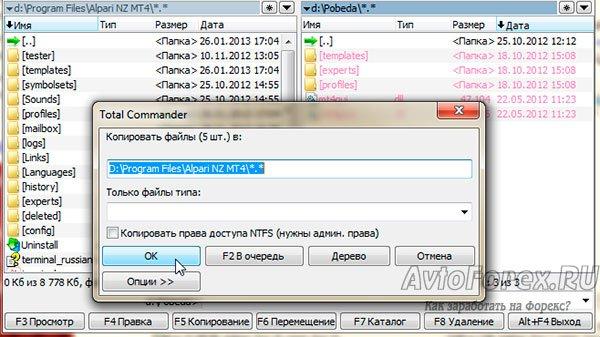 Копирование файлов торговой стратегии Победа в коневую папку торгового терминала.
