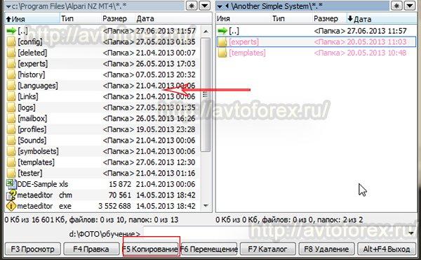 Копирование файлов стратегии Another simple system в папку торгового терминала.