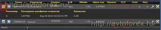 Информация о сделке в платформе Mirror Trader.