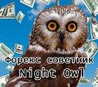 Советник для ночной торговли Night Owl.