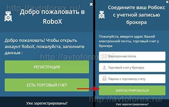 Завершающий шаг регистрации в сервисе RoboX.