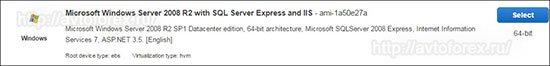 Выбор системы Windows Server 2008.