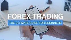 Начинающим трейдерам доступен курс обучения Форекс торговле у брокера AMarkets.