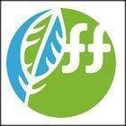 Запуск Telegram-канала с аналитикой брокером FreshForex.